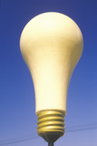 Giant Yellow Idea Light Bulb in Los Angeles, CA