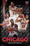 Chicago Bulls - Collage 14