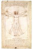 Buy Vitruvian Man 1492 Leonardo Da Vinci Art Poster at AllPosters.com