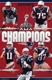 Super Bowl XLIX Champions - New England Patriots