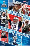 Super Bowl XLIX - Celebration