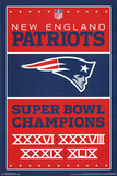 New England Patriots- Champions 2015 NFL New England Patriots Flag with Grommets Super Bowl LI - MVP New England Patriots - R Gronkowski 14 NFL: New England Patriots- Helmet Logo New England Patriots- T Brady 16 Super Bowl LI - Champions
