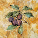 Fruit Frescos IV