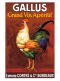 Gallus, Grand Vin Apertif