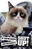 Grumpy Cat - Shut Up Grumpy Cat Mugshot Humor Poster Grumpy Cat - I Had Fun Once It Was Awful Grumpy Cat - No Cats Grumpy Cat- Go Away Grumpy Cat Mona Lisa Grumpy Cat Mona Lisa grumpy cat