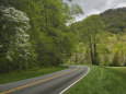 view of hwy 441 near Cherokee in Great Smokey Mountains National Park area