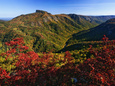 view of linville gorge in the Appalachian Mountains in fall, just 19 miles from Marion NC