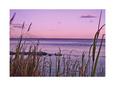 Sunset at the Outer Banks, near Corolla - North Carolina Beaches