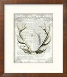 Regal Antlers on Newsprint I Reproduction encadrée par Sue Schlabach