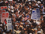 African Americans Waving Signs During Freedom March