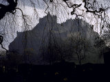 Edinburgh Castle Seen Through a Veil of Tree Branches