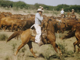 Cowboys on the King Range  TX