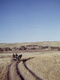 Horse-Pulled Wagon is Driven across Field on Great Western Plains