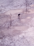 View of Man Walking on Snow and Ice Covered Riverside Park