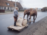 Farmer in East Germany Transporting Goods on a Horse-Drawn Sled