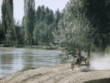 Russian Look of the Land Essay: Boy on Two-Wheeled Donkey Cart Along Fergana Canal