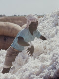 Ethiopian Cotton Farmer