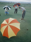 Hawaiians Playing Golf on Course in Rain with Colored Striped Umbrellas  Hilo  Hawaii