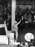 Inauguration of President Dwight Eisenhower  Approached by a Parade Cowboy who Lassoes Him