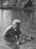 Dr Konrad Lorenz  Viennese Animal Behaviorist  Surrounded by Family of Graylag Goslings