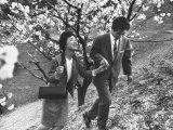 Matsushita Electronics Corp Employees Teruo Kobuchi and Fiancee on Date Surrounded by Cherry Trees