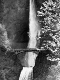 Multnomah Falls on Larch Mt Where the Water Empties into the Columbia River