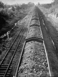 Wartime Railroading: Coal Cars of Freight Train of the Charleston and Western Carolina Line