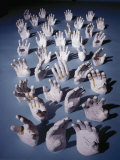 Plaster Casts of Astronaut's Hands for Custom Fitted Space Suits