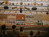Iowa State Fair  1955