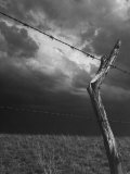 On a Small Farm  Ominous Clouds Overhead  Outlined by Barbed Wire Fencing