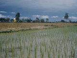 US Aid in Cambodia