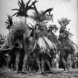 "Wahgi Natives of the Central Highlands Wearing Elaborate Decorations During ""Sing Sing"" Celebration"