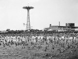 Bathers Enjoying Coney Island Beaches Parachute Ride and Steeplechase Park Visible in the Rear