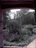 Doorway Framing View of Duke of Windsor's Garden at His Summer Home in South of France