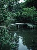 Old Stone Bridge in Garden