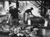 Men Preparing Chicken and Pork During Swamp Barbeque