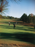 Golfers Playing on the Pinehurst No 2 Championship Golf Course