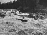 Canadian Woodsman Robert Rock  Falling Out of the Canoe as He Tries a Set Rapids