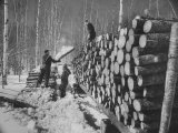 Lumbermen at Lumber Camp in Newfoundland