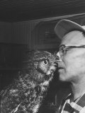 Owl Biting Man's Nose