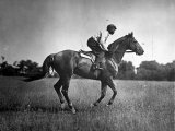 Race Horse Man O' War Papier Photo
