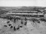 Refugees from East Zone of Germany are Housed in Barracks on Sand Dunes
