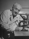 Discoverer of Vitamin C Albert Szent-Gyorgyi  Working with His Microscope