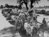 Convoy of Muslims Migrating from the Sikh State of Faridkot after the Division of India