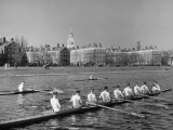 Crew Rowing on Charles River across from Harvard University Campus Papier Photo par Alfred Eisenstaedt