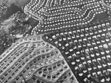 Aerial View of Suburban Housing Development Outside of Philadelphia