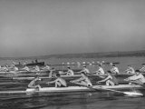 Washington Univ. Rowing Team Practicing on Lake Washington Papier Photo par J. R. Eyerman