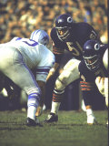 Football: Chicago Bears Dick Butkus No51At Line of Scrimmage During Game Vs Detroit Lions