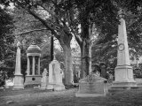 Monuments and Trees in Greenwood Cemetery