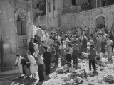 International Red Cross Employees Helping Jewish Refugees